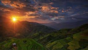 Rice fields on terraced in rainny season at Mu cang chai Stock Image