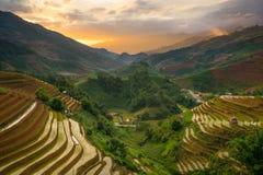 Rice fields on terraced in rainny season at Mu Cang Chai, Yen Bai, Vietnam. Stock Images