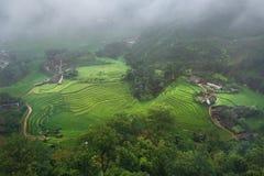 Rice fields on terraced in rainny season Stock Photos
