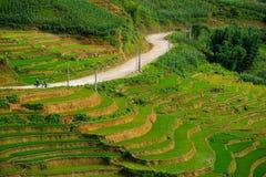 Rice fields on terraced in rainny season at SAPA, Lao Cai, Vietnam. Stock Images