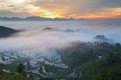Rice fields on terraced in sunrise Stock Photos