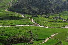 Rice fields on terraced of Tu Le, YenBai, Vietnam. Rice fields on terraced of Tu Le, Yen Bai, Vietnam with small village and canal Stock Photo