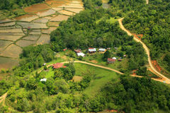 Rice filed and mountain of Borneo. (Aerial Shoot Stock Image