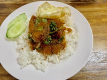 Rice with fish curry royalty free stock photos