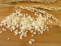 Rice flakes Royalty Free Stock Photo