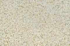 Rice. Fresh basmati rice texture backround Royalty Free Stock Photo