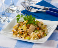 Rice with fresh tuna Royalty Free Stock Photography