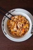 Asian Rice With Chicken Stock Photography