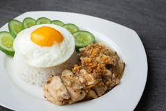 Rice,Fried egg,Fried chicken with garlic and black pepper in white dish on the concrete table royalty free stock photo