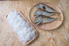 Rice with fried mackerel Royalty Free Stock Image