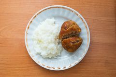 Rice and fried patty on the white plate Royalty Free Stock Photos