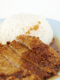 Rice and fried pork Stock Images