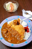 Rice with fried pork Stock Photography