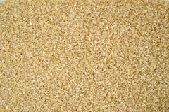 Rice germ. Texture and background Stock Photo
