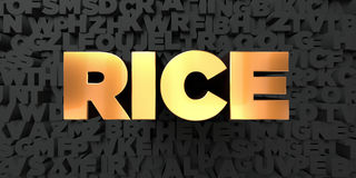 Rice - Gold text on black background - 3D rendered royalty free stock picture Royalty Free Stock Image