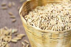 Rice grain in basket Royalty Free Stock Photos