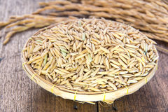 Rice grain in basket Royalty Free Stock Images