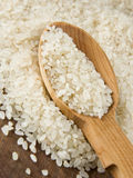 Rice grain in spoon Stock Images