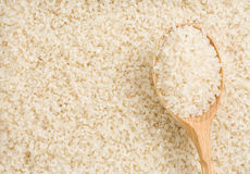 Rice grain and spoon Royalty Free Stock Photo