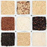 Rice Grain Varieties Stock Photography