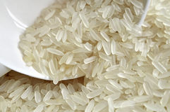 Rice grain. Stock Photos