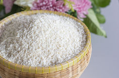 Rice grain. (white sticky rice) in basket Stock Photos