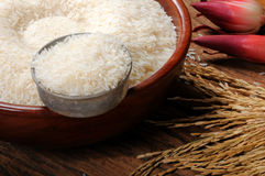 Rice grain in wooden bowl and paddy on wooden table Royalty Free Stock Photos