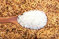 Rice grain in a wooden spoon and forming a background. Food background. rice grain in a wooden spoon and forming a background. top view royalty free stock photos