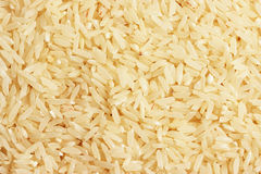 Rice grains. (Oryza sativa). It is the grain with the second highest worldwide production, after maize (corn&#x29 Stock Image