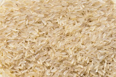 Rice grains Stock Photo