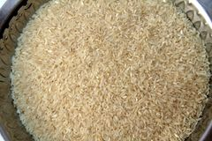 Rice Grains Stock Photography