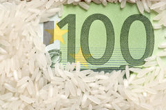 Rice grains on bank note Stock Photography