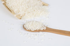 Rice grains closeup Stock Images