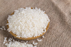 Rice grains closeup Stock Photos