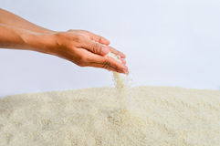 Rice Grains Fall Stock Photography