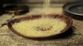 Rice stock video