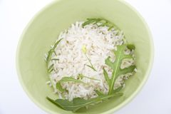 Rice with green tarragon leaves Royalty Free Stock Photography
