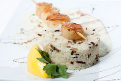 Rice with grilled fish and white sweet sauce Stock Photography