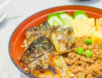 Rice And Grilled Mackerel Stock Images