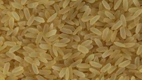 Rice groszkuje bioo zbiory wideo