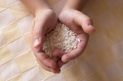 Rice in hands Royalty Free Stock Photography