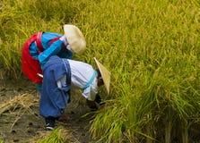 Rice harvest ceremony Stock Photo