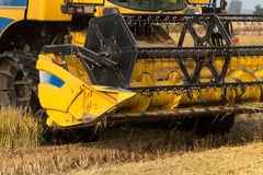 Rice harvest with harvester. Rice harvest close up, machinery Royalty Free Stock Images