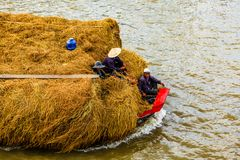 Rice hay on the way to market, Mekong River, Mekong Delta, Vietnam royalty free stock photo