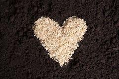 Rice Heart on Dirt Stock Photos