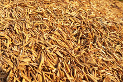 Rice hulls Stock Photography