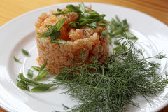 Rice in Hungarian style. With paprika on a white plate with green onions and dill Stock Image