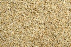 Rice husk Royalty Free Stock Photo