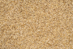 Rice husk. Royalty Free Stock Photos