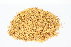 Rice Husk  on White background Royalty Free Stock Images